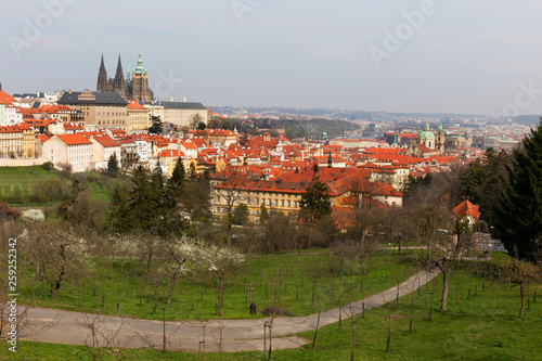 Early spring Prague City with gothic Castle and the green Nature and flowering Trees, Czech Republic