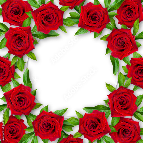 Background of red roses and green leaves around on a white background. Vintage style. Mock-up.