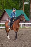 Fototapeta Fototapety z końmi - Horse riding lessons for beginners © evannovostro