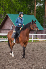 Horse riding lessons for beginners