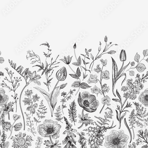 Spring magic. Seamless border. Vector vintage illustration. Black and white © olga250