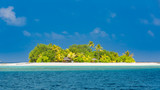 Beautiful tropical beach in Maldives with few palm trees and blue lagoon - Image