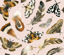 """Постер, картина, фотообои """"Hand painted watercolor feathers and butterflies. Seamless pattern on pink background."""""""