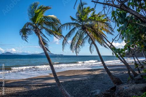 Plage de Grande Anse à Trois rivières en Guadeloupe