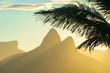 Quadro Scenic sunset view of Two Brothers Mountain framed by the silhouette of a palm tree in Ipanema Beach, Rio de Janeiro, Brazil