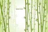 Fototapeta Fototapety do sypialni - Vector greeting card with bamboo on a light background. © daudau992