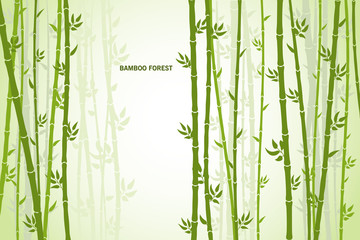 Vector greeting card with bamboo on a light background. © daudau992