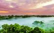 Quadro sunset over the trees in the brazilian rainforest of Amazonas