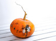canvas print picture - Pumpkin ugly with rot on white wood background