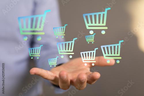 Leinwanddruck Bild online shopping