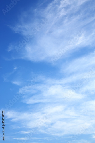 clear blue sky with white cloud in the morning good weather day - 259537702