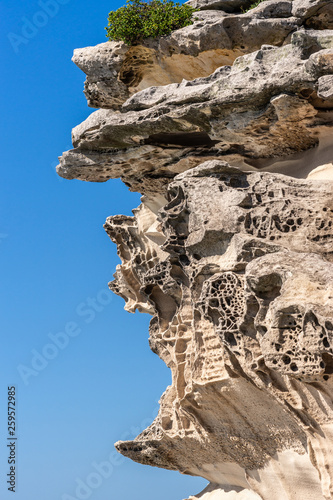 Sydney, Australia - February 11, 2019: Closeup of Mackenzies Point beige-gray rock formation on South shore lands end of Bondi beach. Blue sky. One green spot.