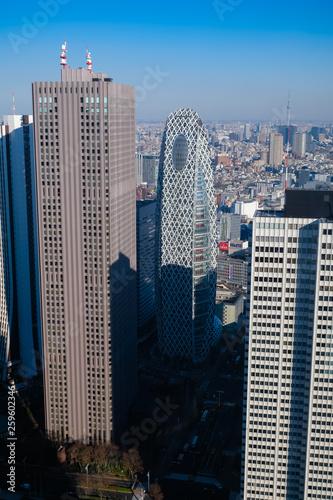 東京都庁 展望台からの景色