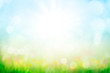 abstract background with green grass and flowers over sunny blue sky - 259652948
