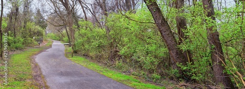 Views of Nature and Pathways along the Shelby Bottoms Greenway and Natural Area Cumberland River frontage trails, bottomland hardwood forests, open fields, wetlands, and streams, Nashville, Tennessee. - 259659356