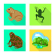 frog and frog