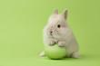 Leinwanddruck Bild - Easter bunny with egg on green background