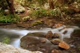 Fototapeta Fototapety do łazienki - stream in the forest © oraziopuccio