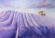 Watercolor hand drawn lavender field