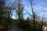 Bruxelles ((Belgique) : Parc Duden de Forest