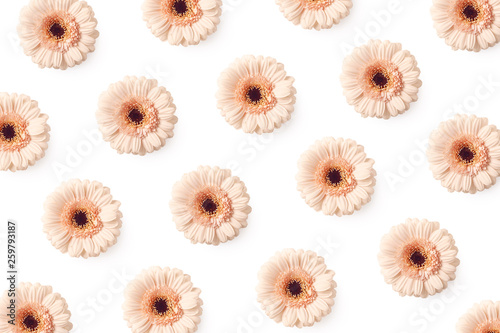 Floral background of pink gerbera flowers © baibaz