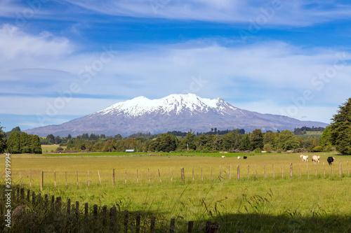 fototapeta na ścianę Mount Ruapehu volcano in New Zealand