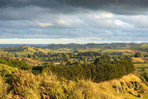 typical rural landscape in New Zealand - 259908157