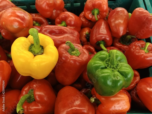 Colorful peppers On the plate to make Thai food45 - 259910164