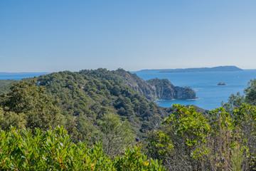 paysage de l'île de Porquerolles © Bernard