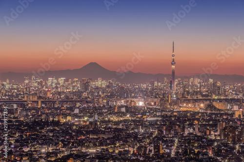Tokyo city night view with Mt.Fuji