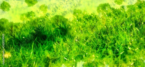 wild meadow grass structure in bright green tones, computer painting. © jozefklopacka