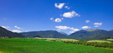 Rural landscape with a green field and the beautiful blue sky
