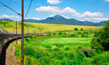 Beautiful summer landscape with moving train