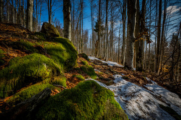Rachel - Bayerischer Wald