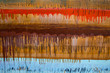 Rainbow striped background. brown colorful stripes. Abstract colorful background. paint drips. color bars. brown striped background - 260075907