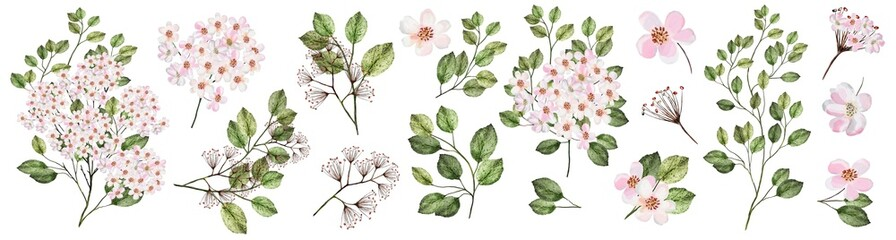 Blooming garden twig with pink flowers. Watercolor illustration. Botanical collection of wild and garden plants. Set: leaves, flowers, branches and other natural elements. © Erenai
