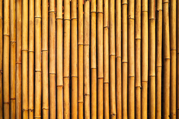 Bamboo texture wall background © WK Stock Photo