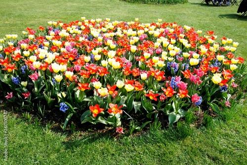 Floralies du château de Groot Bijgaarden (Brabant Flamand- Belgique) © virginievanos