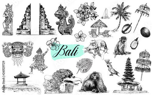 Set of hand drawn sketch style Bali themed objects isolated on white background. Vector illustration. © Ecaterina Sciuchina