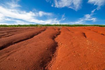 Terra vermelha com sinais de erosão, com uma pequena plantação de trigo no fundo e um céu azul