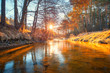 Quadro Autumn dawn