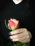 Rose in woman's hand
