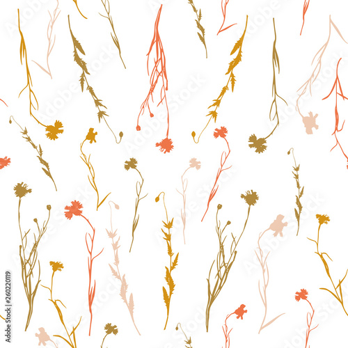 Floral background. Vector seamless pattern with hand drawn cornflowers and leaves. - 260220119