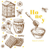 Retro vector honey background template with hand drawn elements. Illustration of honey bee vintage, health natural sweet