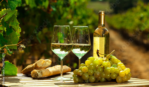 Leinwandbild Motiv still life with glass of White wine grapes and bread on table in field