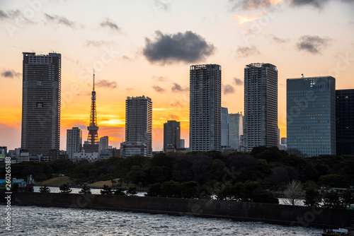 View of Tokyo Skyline at Sunset in Winter