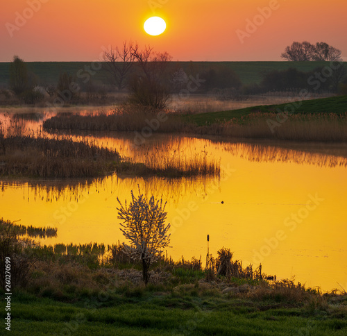 sunrise over a green spring field by the lake, in the background white trees blooming and far away from the suburbs