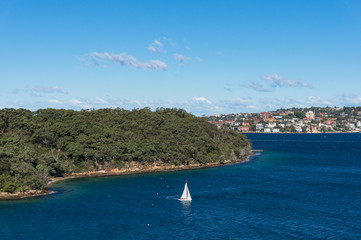 White sail boat sailing the Sydney Harbour