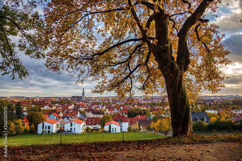 canvas print picture Regensburg im Herbst