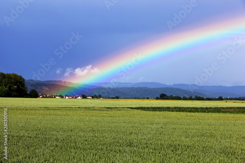Regenbogen vor einem Berg über einer Wiese © Thomas